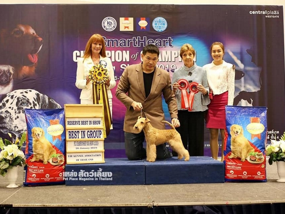 Champion of Champion Dog Show 2019