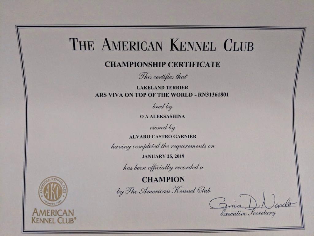 Ars Viva On Top Of The World - American Champion!